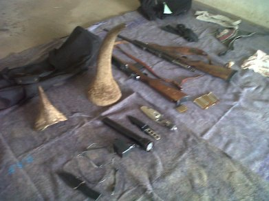 Horns & weapons recovered by police